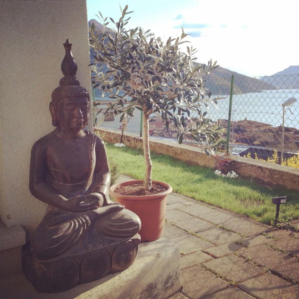 Buddha in pietra